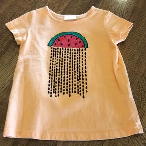Hanna andersson watermelon t shirt